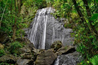 la-coca-waterfall-el-yunque-260nw-537849145